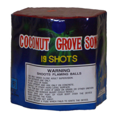 Coconut Grove Song 19 shot